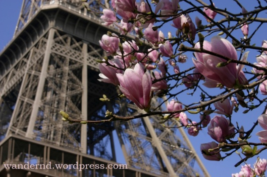 Paris-printemps-tour-eiffel