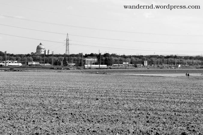 der etwas andere Blick auf den Zentralfriedhof