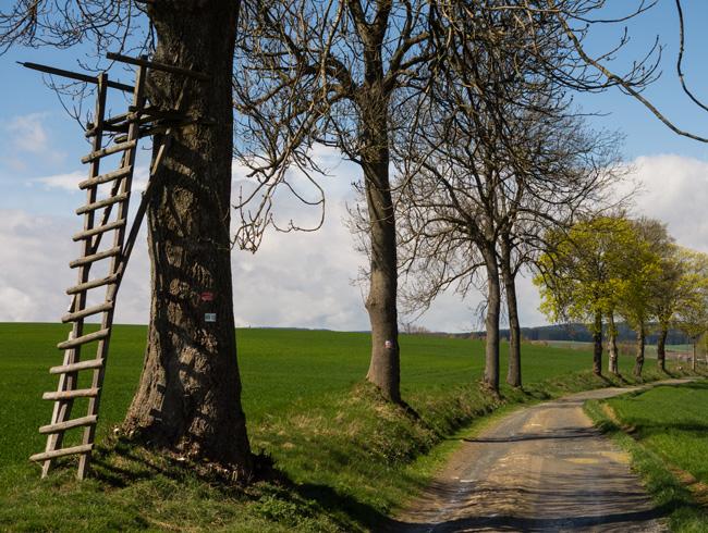 auf dem Fränkischen Gebirgsweg -- Foto (c) Christof Herrmann