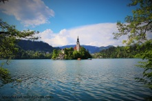 Bled Insel